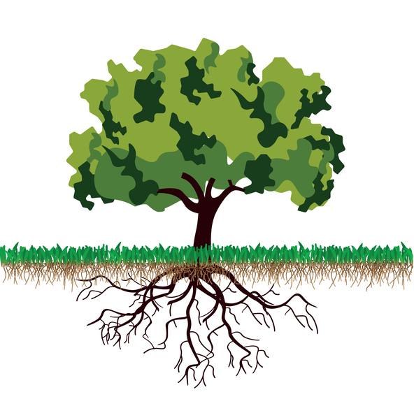 Graphic image of tree and tree roots